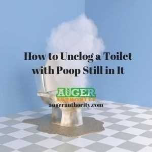 how to unclog a toilet with poop still in it